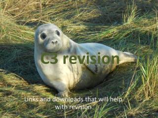 C3 revision