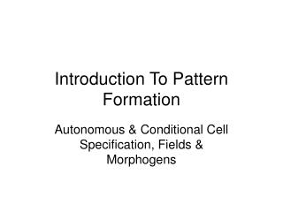 Introduction To Pattern Formation