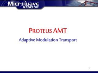 P ROTEUS  AMT Adaptive Modulation Transport