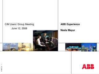 ABB Experience  Neela Mayur