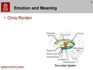 Emotion and Meaning