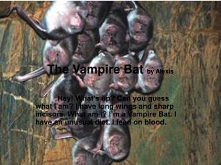 The Vampire Bat  by Alexis