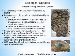 Ecological Updates Mussel Survey Protocol Update
