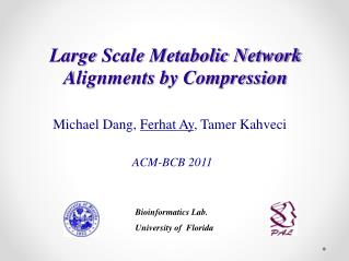 Large  Scale Metabolic Network Alignments by Compression