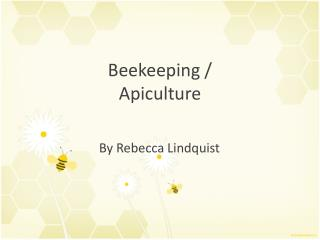 Beekeeping / Apiculture
