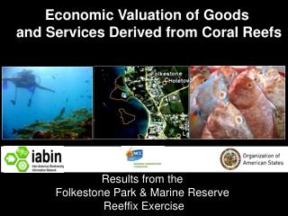 Economic Valuation of Goods  and Services Derived from Coral Reefs