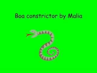 Boa constrictor by Malia