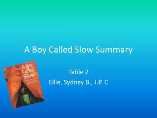 A Boy Called Slow Summary