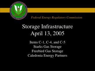 Storage Infrastructure April 13, 2005