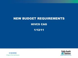 NEW BUDGET REQUIREMENTS HIVCS CAG   1/12/11