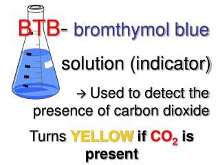 BTB -  bromthymol blue          solution (indicator)