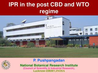 IPR in the post CBD and WTO regime