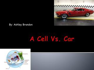 A Cell Vs. Car