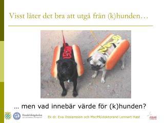 … men vad innebär värde för (k)hunden?