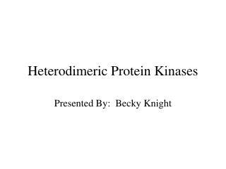 Heterodimeric Protein Kinases