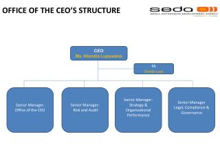 OFFICE OF THE CEO�S STRUCTURE