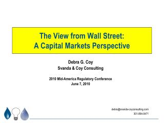 The View from Wall Street: A Capital Markets Perspective