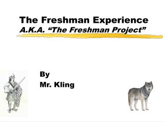 "The Freshman Experience A.K.A. ""The Freshman Project"""
