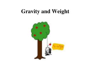 Gravity and Weight