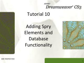 Tutorial 10 Adding Spry Elements and Database Functionality