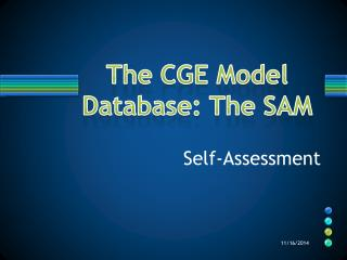 The CGE Model Database: The SAM