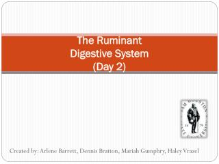The Ruminant  Digestive System  (Day 2)