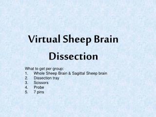 Virtual Sheep Brain Dissection