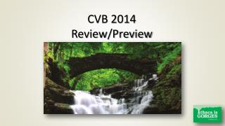CVB 2014 Review/Preview