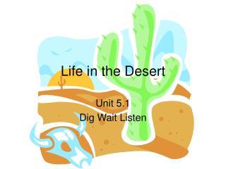 Life in the Desert
