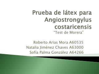 Prueba de l tex para  Angiostrongylus costaricensis