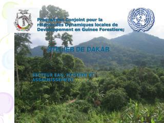 Programme Conjoint pour la  relance des Dynamiques locales de  Developpement en Guinee Forestiere;