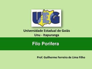 Prof. Guilherme Ferreira de Lima Filho