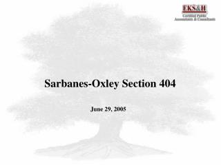 Sarbanes-Oxley Section 404