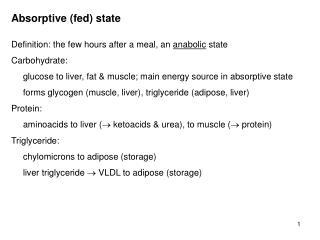 Absorptive (fed) state