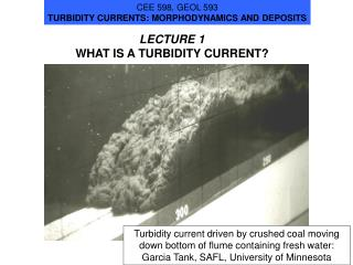 LECTURE 1 WHAT IS A TURBIDITY CURRENT?