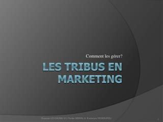 Les Tribus en Marketing