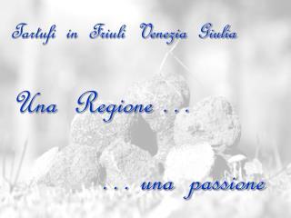 Tartufi  in  Friuli  Venezia  Giulia Una  Regione …             … una  passione