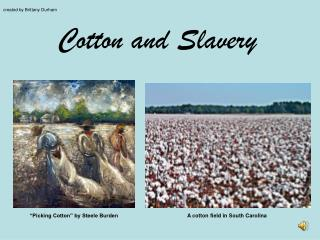 Cotton and Slavery