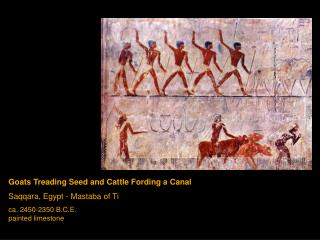 Goats Treading Seed and Cattle Fording a Canal Saqqara, Egypt - Mastaba of Ti ca. 2450-2350 B.C.E. painted limestone