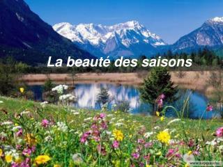 La beaut  des saisons
