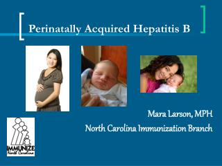 Perinatally Acquired Hepatitis B