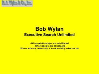 Bob Wylan Executive Search Unlimited