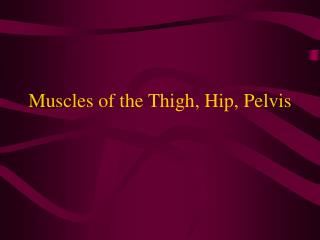 Muscles of the Thigh, Hip, Pelvis