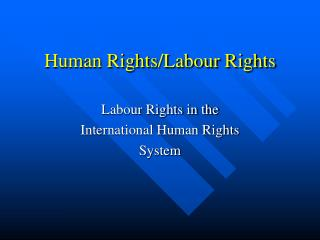 Human Rights/Labour Rights