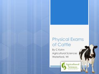 Physical Exams of Cattle