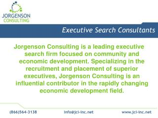 Executive Search Consultants