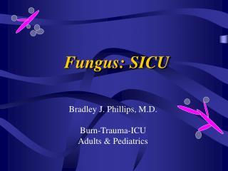 Fungus: SICU