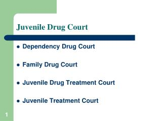 Juvenile Drug Court
