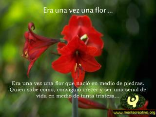 Era una vez una flor ...
