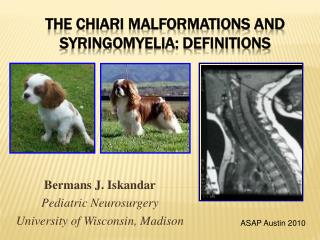 The Chiari Malformations and syringomyelia: Definitions